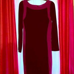 Lauren Ralph Lauren Magenta Trimmed Bodycon Dress